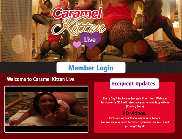 Caramel Kitten Live Coupons