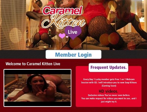 Free Caramel Kitten Live Account Login